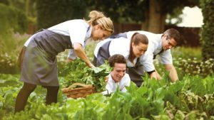 Staff Sustainable